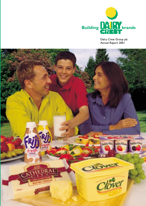 Dairy crest group annual report 2012